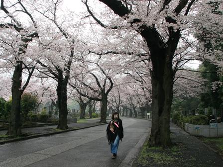 0403花見散歩_02