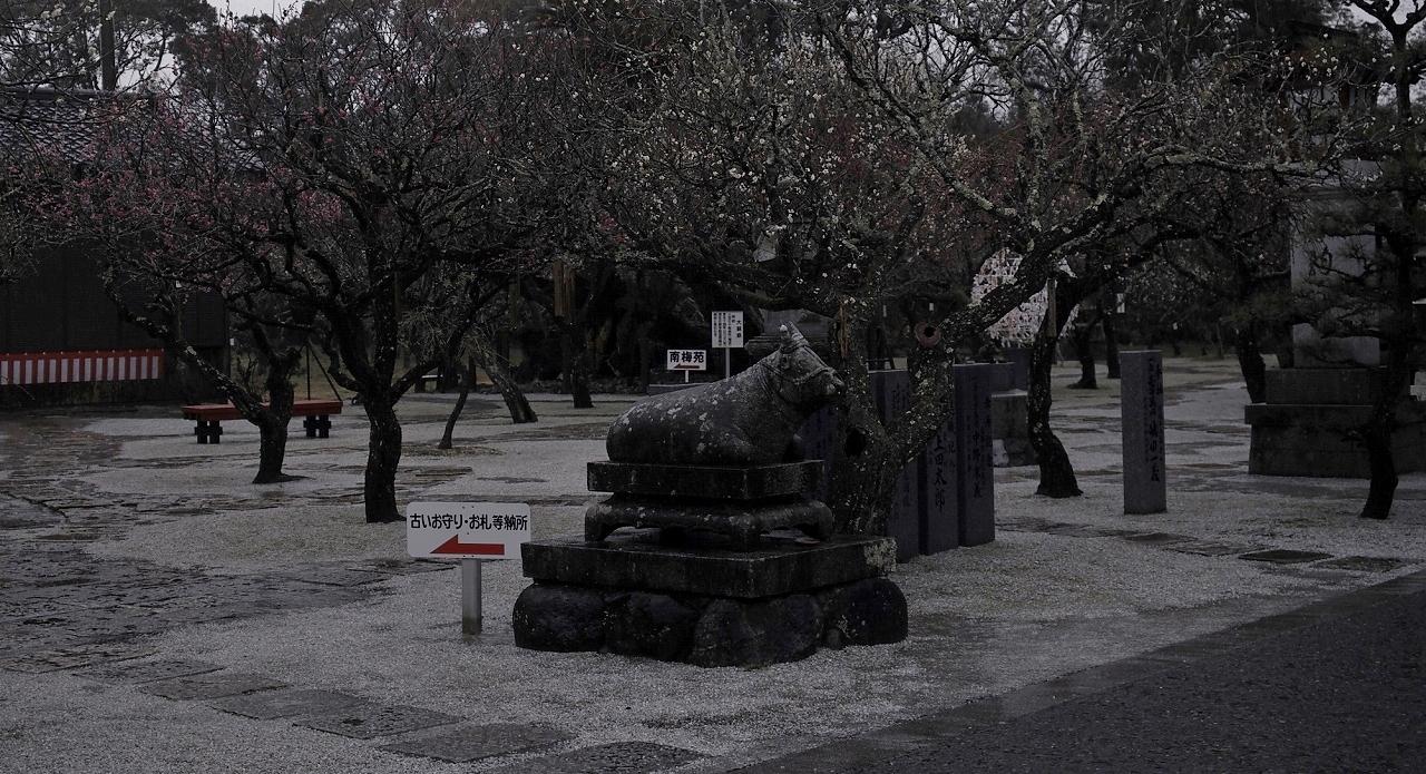天満宮06