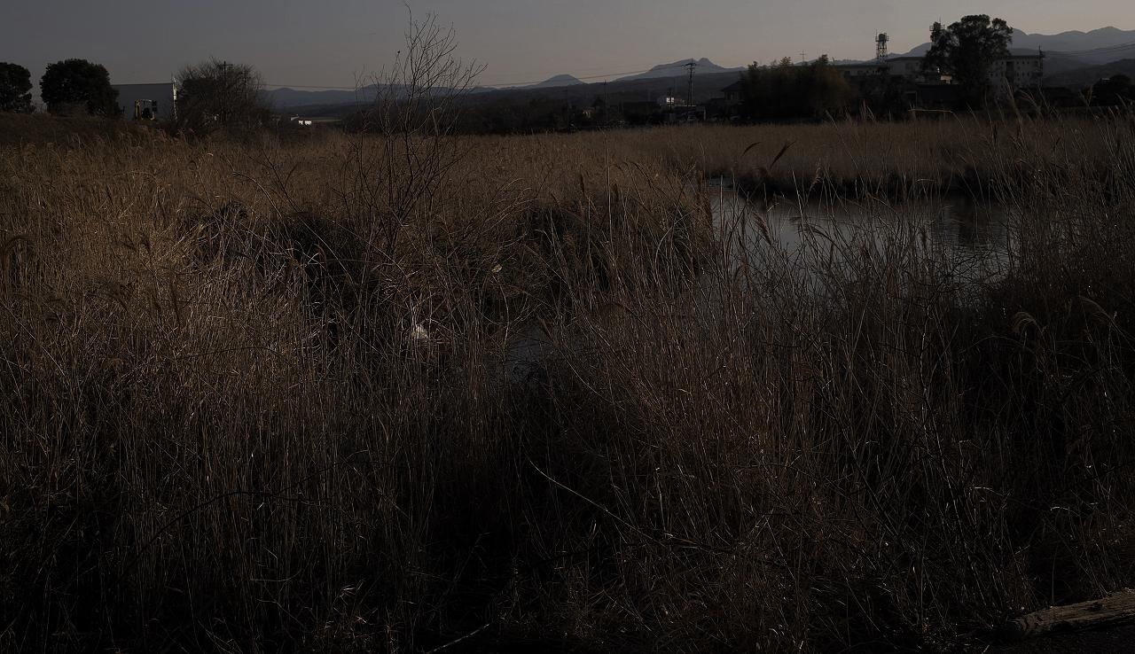 城井川12