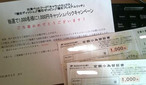 懸賞 16-1 日清ペットフード