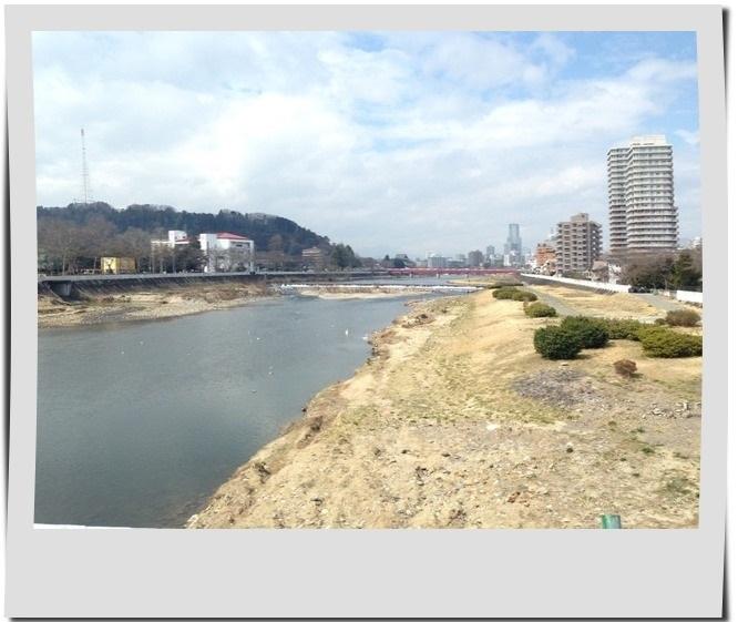 広瀬川 橋