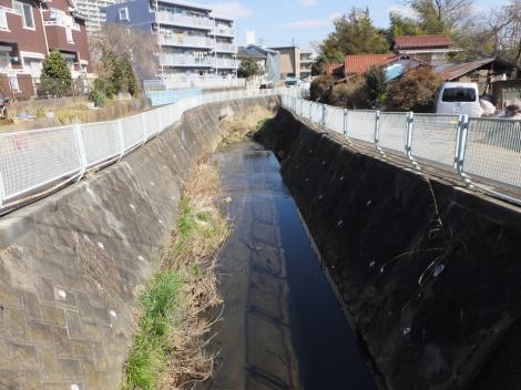下村橋より三沢川下流を望む