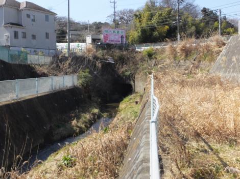 鶴川街道を潜った三沢川