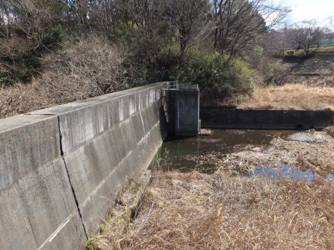 三沢川源流の調整池