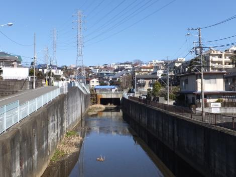 中之橋より平瀬川下流を望む