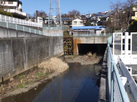 平瀬川・平瀬川隧道入口