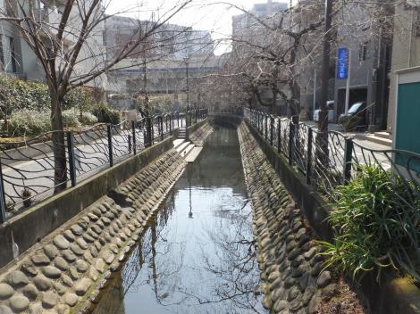 曙橋より二ケ領用水川崎堀下流を望む