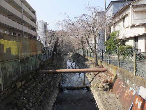 二子塚橋より二ケ領用水川崎堀上流を望む
