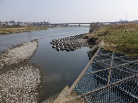 諏訪排水樋管水路・多摩川合流点