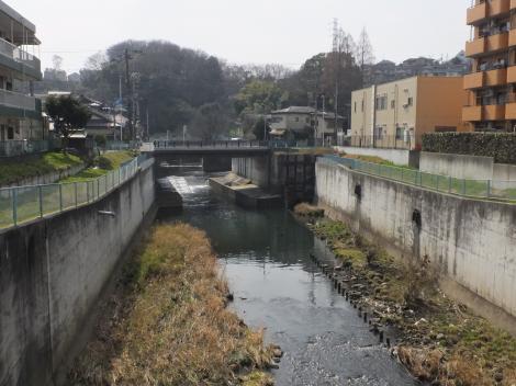 新久地橋より平瀬川上流を望む