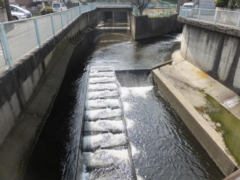 新平瀬橋より平瀬川上流を望む
