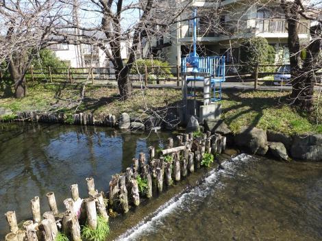 二ケ領用水・中野島堰
