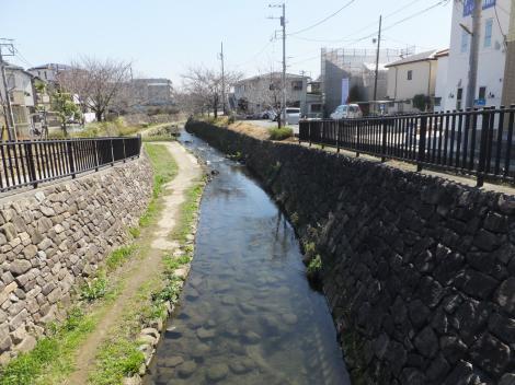 橋本橋より二ケ領用水下流を望む