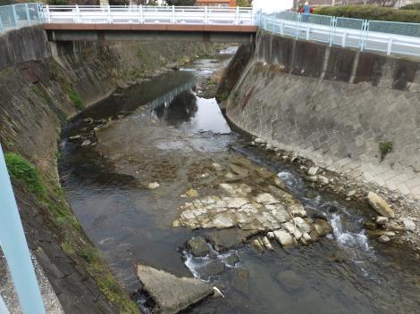別所橋下流の平瀬川