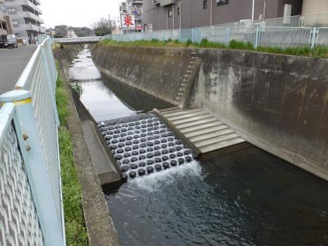 平瀬川の床固工と魚道・堰下橋上流
