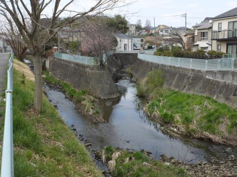 平瀬川本支川合流点