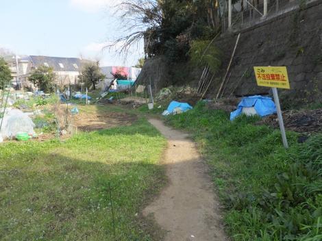 平瀬川・長沢中学南付近