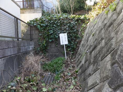 平瀬川源流・長沢中学南
