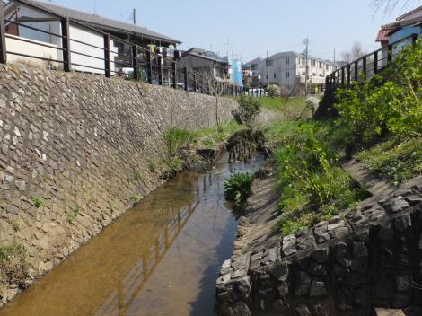 平瀬川の親水護岸・水沢橋付近より下流望む