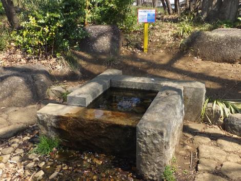 菅生緑地水源の森「水沢井」