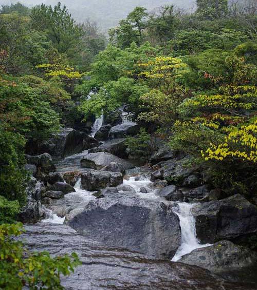 屋久島ー二俣川