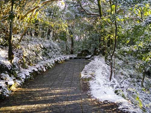2016-屋久島雪景色-1