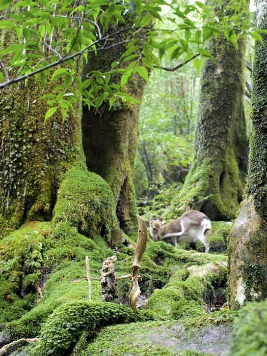 流木のオブジェと鹿