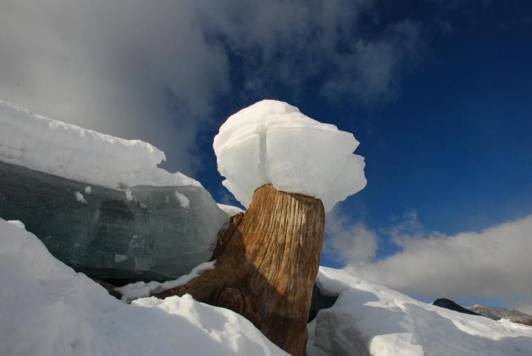 糠平湖のキノコ氷~
