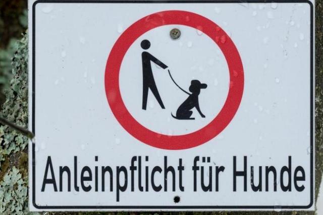 ベルリン 犬リーシュ 看板 (640x427)
