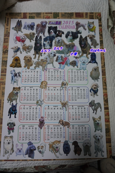 2015-12ラグ通信カレンダー2015年