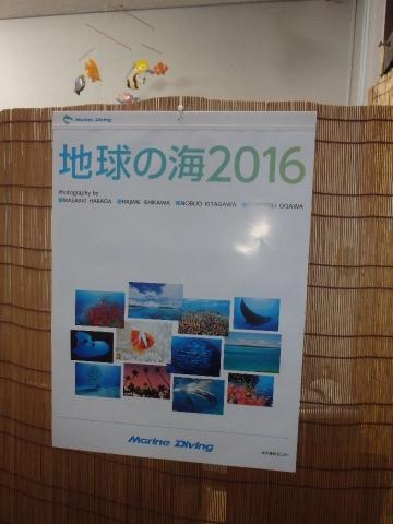 2015_12260001.jpg