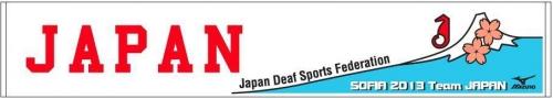 2013 夏季デフリンピック