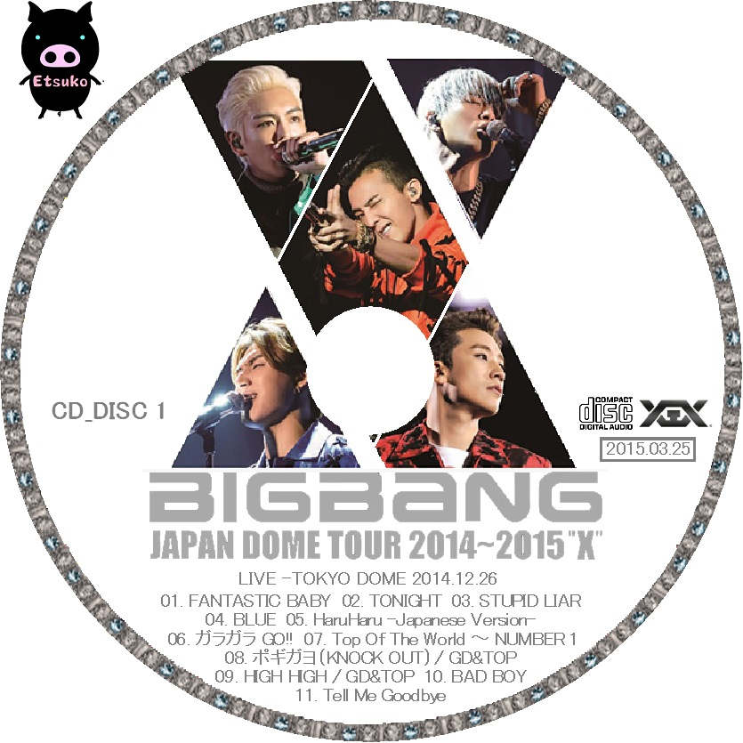 jyj bigbang japan dome tour 2014 2015. Black Bedroom Furniture Sets. Home Design Ideas