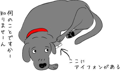 スマホと犬