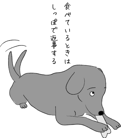 おやつを食べている犬
