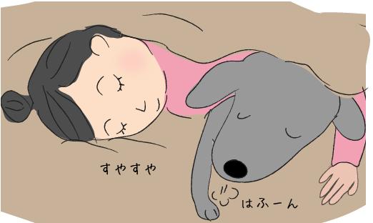 一緒に眠る犬