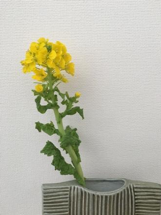 菜の花 春 北欧インテリア リサラーソン ワードローブ セーター
