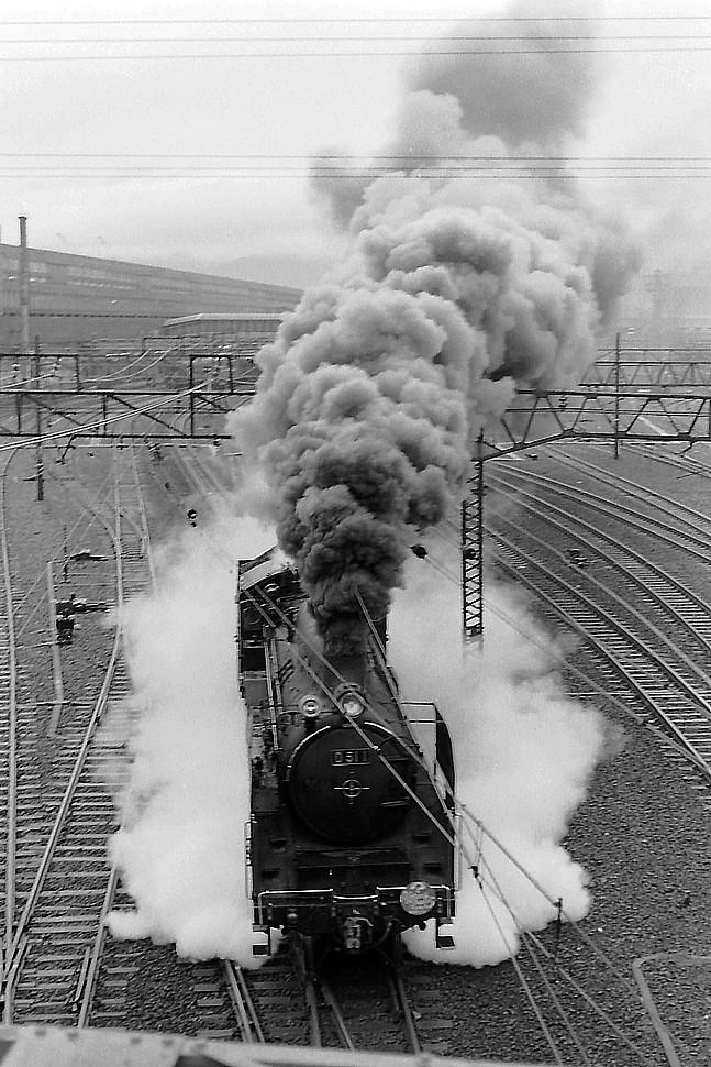 PICT1912v.jpg