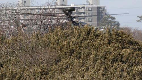 KO8A0363.jpg