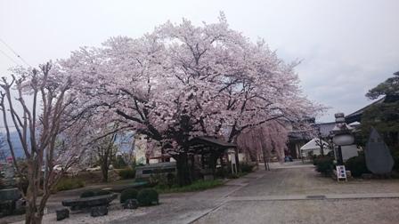 久遠寺2016