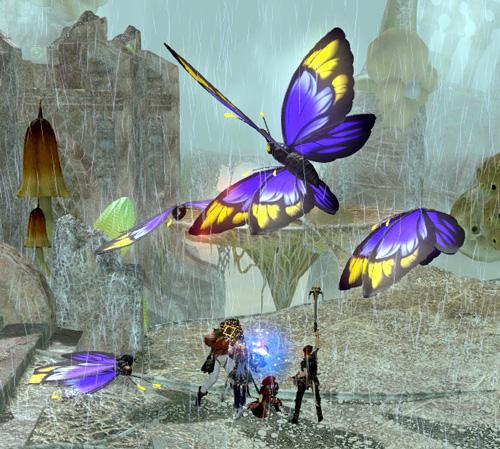 蝶が舞い飛ぶ