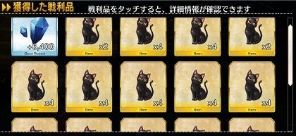 黒猫フいっぱい