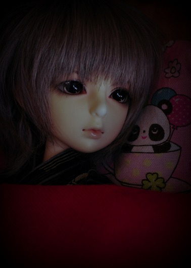 DSC_0078_20160330102744a5c.jpg