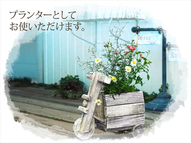 wb-001.jpg