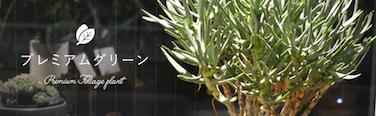 main_greenblog.png