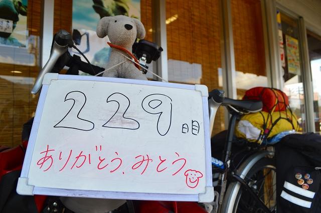 229日目 3200(1) (17)