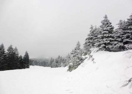 2016.3.10樹氷原コース