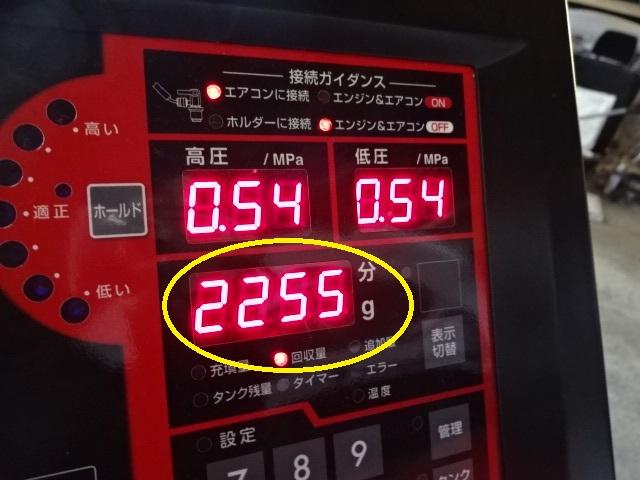 DSC01447.jpg