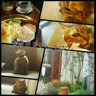 PhotoGrid_1459138046457.jpg