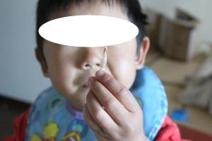 tukushi2JPG.jpg